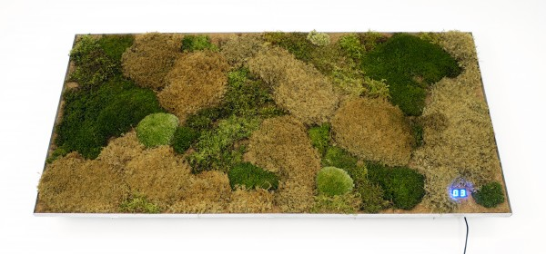 3.) Cartridge and Moss Insert combined